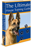 house training guide